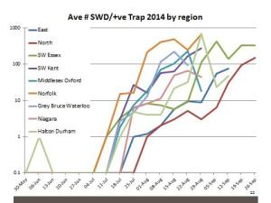 Figure 1: SWD flies trapped in Ontario, by region, 2014