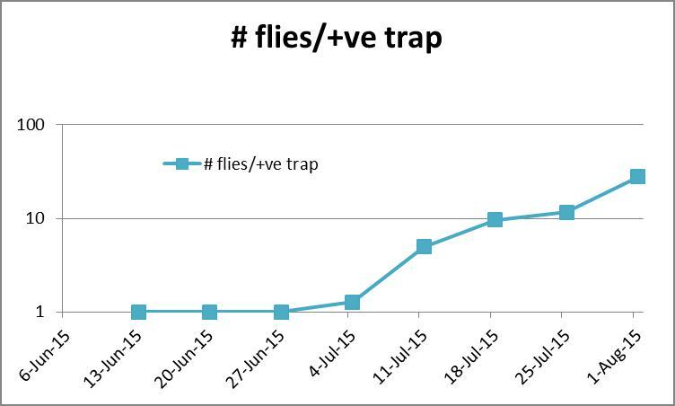 Figure 2: # SWD flies per positive trap