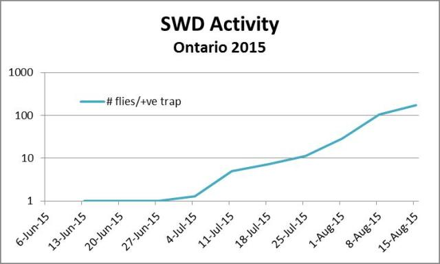 # SWD flies per positive trap by week, on a log scale.