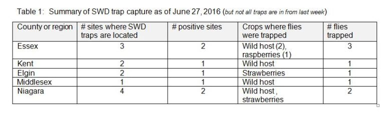 swd trap capture summary june 27