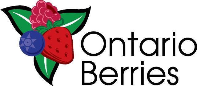 OBGA Logo_3 Berry
