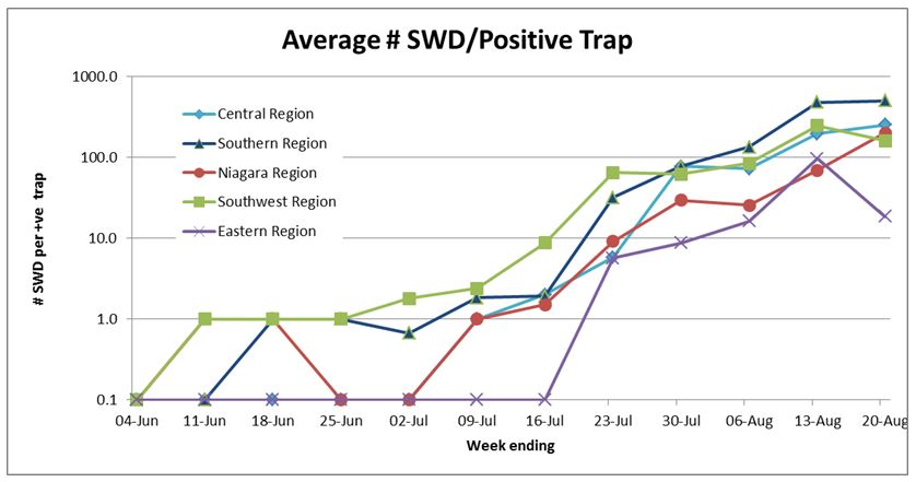 swd table august 26
